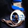 Disney Half Marathon Medal (2012)