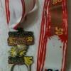 PsychoPsummer 50K Medal 2012