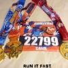 Goofy Challenge Medals 2014