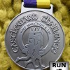 Castleward Challenge Half Marathon Medal – 2014 – Run It Fast