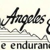 Angeles Crest 100 Mile Endurance Run Logo – Run It Fast