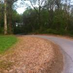 April - Andrew Jackson Marathon 076