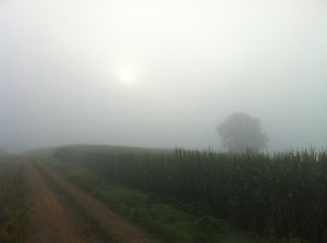 Vol State 500K: Running Hard in the Cornfields in Castle Rock, Georgia