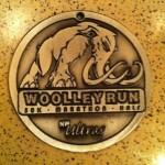 Woolley Run Ultra 50K Medal - 2012
