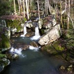Savage Gulf Trail Marathon (2012) Double Waterfalls