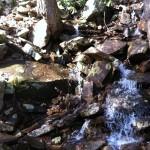 Savage Gulf Trail Marathon (2012) Water Rocks