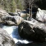 Savage Gulf Trail Marathon (2012) Rocks n Water