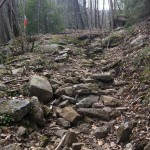 Savage Gulf Trail Marathon (2012) Rock Climbing Fun