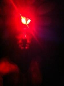 VS500K RR - Joshua Holmes - Vol State 500K Creature of the Night
