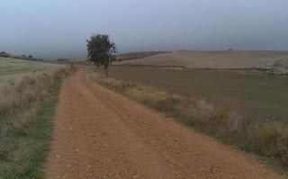 El Camino stretches west of Rabé