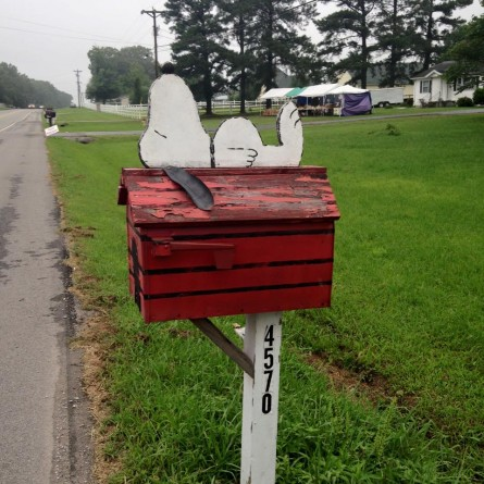 Snoopy Vol State 500K Course Mailbox